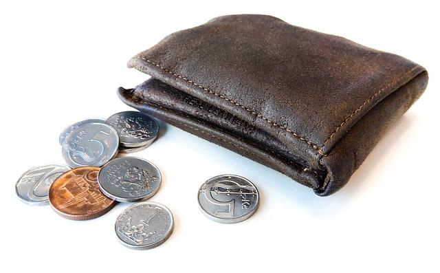 peněženka a mince