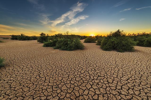 suchá zem